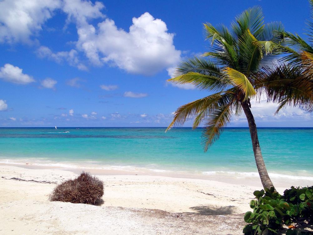 Dominikanische Republik: Punta Cana II
