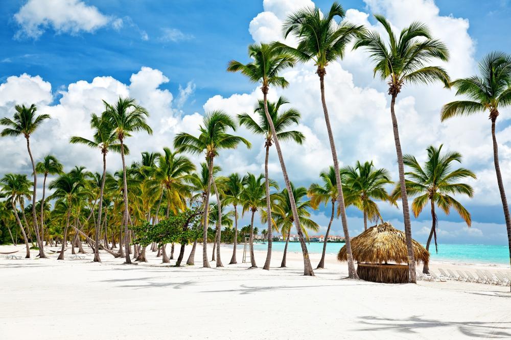 Dominikanische Republik: Punta Cana III