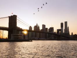 4519+USA+New_York_City_-_Manhatten+Brooklyn_Bridge_am_Abend+TS_169258380