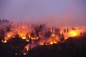 Schweden Waldbrände Karte.Schweden Verheerende Waldbrände Außer Kontrolle