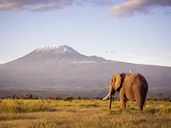 Kilimandscharo - Tansania