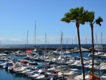 442+Spanien+Teneriffa+Costa_Adeje+Puerto_Colón+GI-503467904