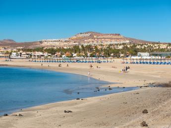 602+Spanien+Fuerteventura+Caleta_de_Fuste+GI-1205955869