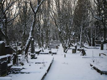 Friedhof Holavallagardur - Reykjavik