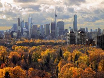 Skyline - Toronto