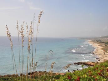 305+Spanien+Menorca+Son_Bou+TS_176828723