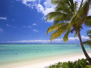 10129+Mauritius+Balaclava+TS_452496495