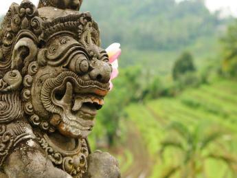 Indonesien: Insel Bintan