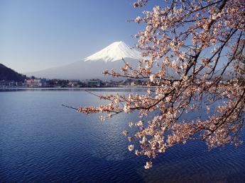 Fuji - Fujinomiya