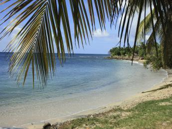 4244+Martinique+Anse_A_L'ane+TS_91712621