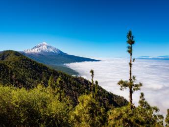 Pico del Teide - La Orotava (Orotava Tal)