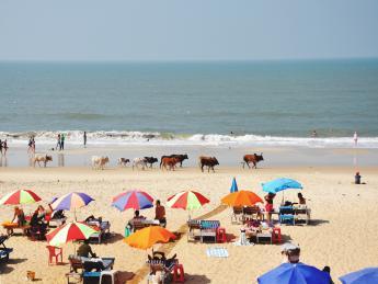4941+Indien+Goa+Palolem_Beach+GI-562840703