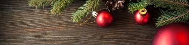 Titelbild 6 Varianten, wie Sie Ihren Weihnachtsbaum nach Hause transportieren