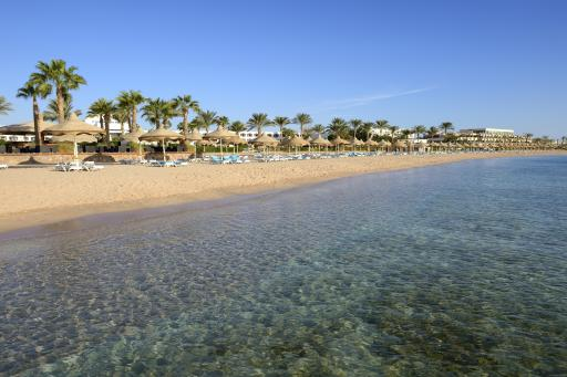 Sharks Bay (Sharm El Sheikh)