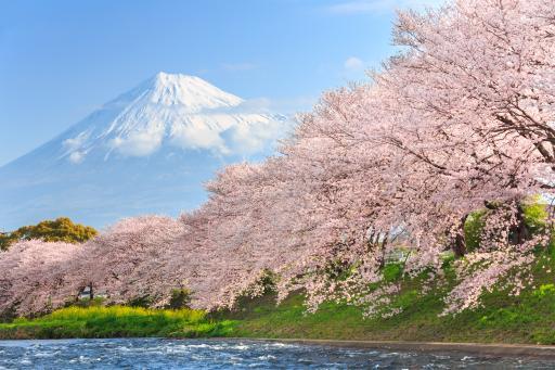 127+Japan+Vulkan_Fuji+GI-471235498