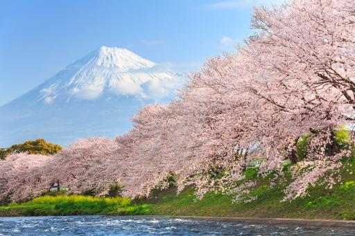 Vulkan Fuji - Fuji