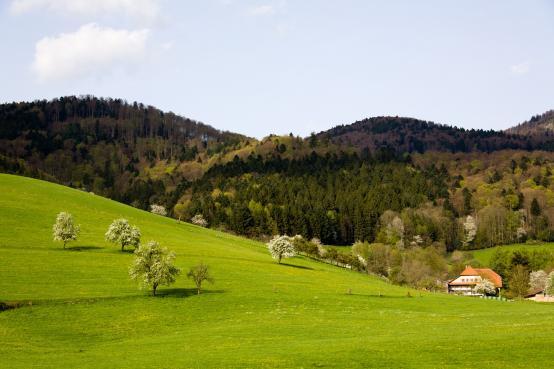 Spieleland Gera