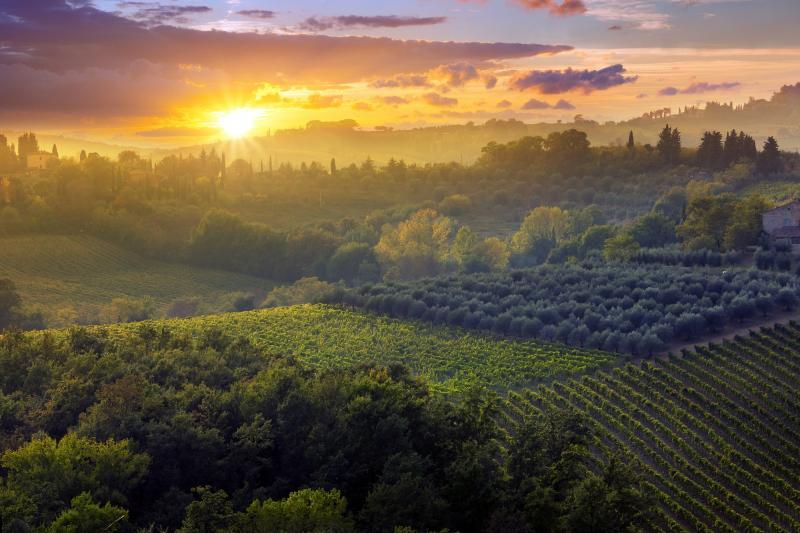 Italien: Toskana - Herbst