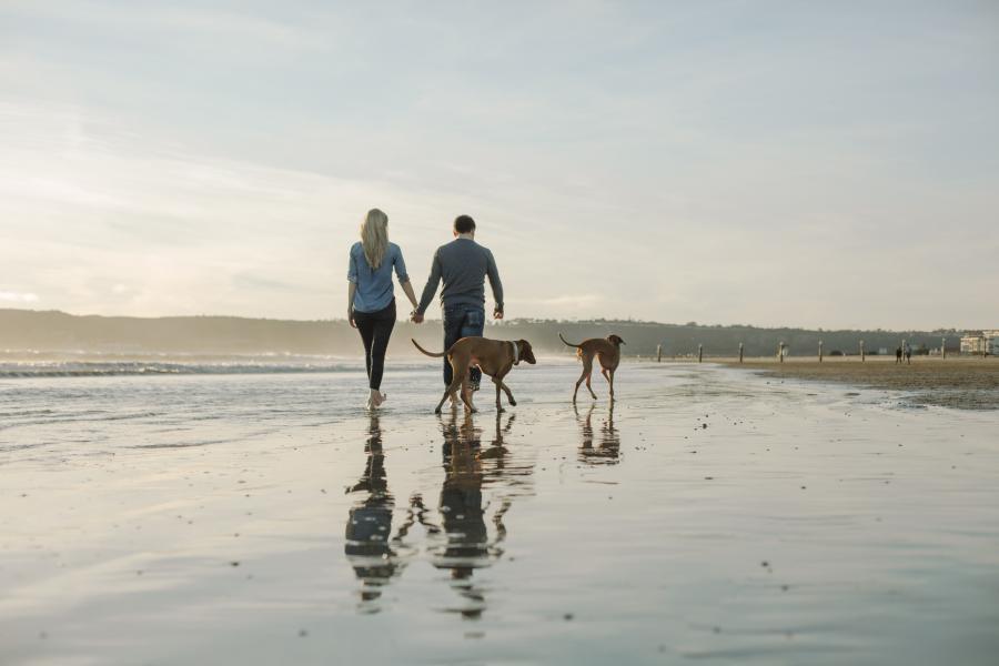 Hunde+Strand+Meer+Paar+Spaziergang+GI-961511716