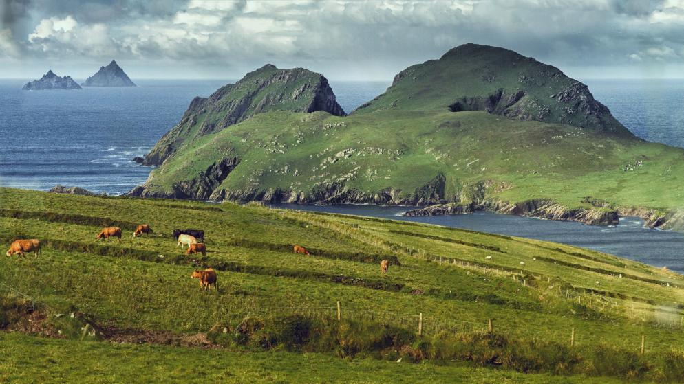 Irland: Michael Skellig - Insel